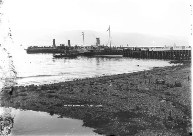The old pier at Wemyss Bay : Steamers